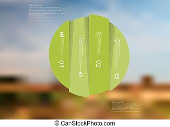 Illustration infographic template with circle vertically divided to four green parts