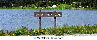 Little Bear Lake - Brown, wooden sign, labeling Little Bear...