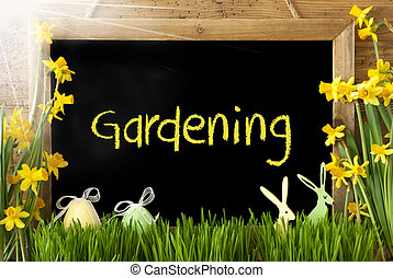 Sunny Narcissus, Easter Egg, Bunny, Text Gardening -...