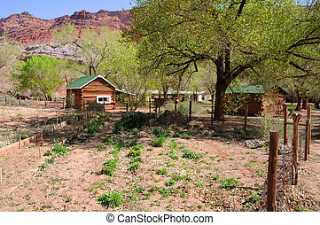 pionero, jardín, solo, DELL, rancho
