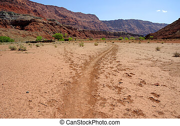 Paria Canyon Wilderness Hiking Trail