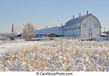 Historic Dairy Barn at Creamer's Field during Winter -...