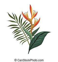 bird of paradise flower and leaves palm