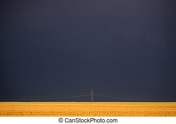 Darkened skies behind power tower and wheat field