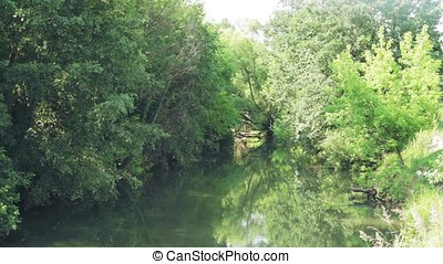 a river with green banks, summer nature