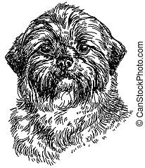 Shih Tzu vector hand drawing illustration - Graphic portrait...