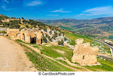 Cemetery at the Marinid Tombs in Fes, Morocco - Cemetery at...
