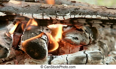Bonfire in the forest at the day. Close up shot