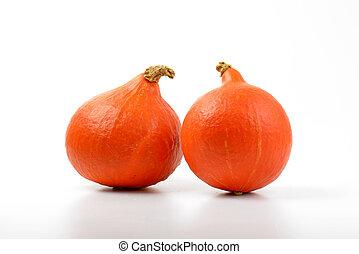 small orange pumpkins - two small orange pumpkins on white...
