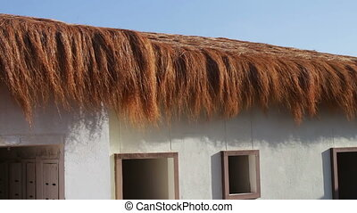 stylish thatched roof of the white building that develops in...