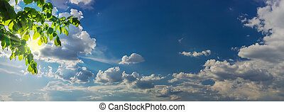 Sky panorama with sun rays from behind branches and clouds -...