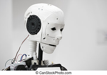 The head of robot