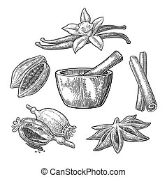 Set of Spices, Mortar and Pestle.. Vintage vector engraved...