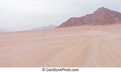 Red desert landscape of Sinai Mountains red soil around the...