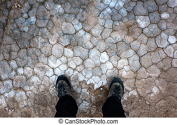 land - Cracked land texture. Beautiful background for your...