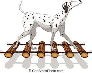 Dalmatian dog crossing the bridge illustration