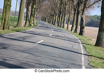 Rural asphalted road in the European camp - Germany