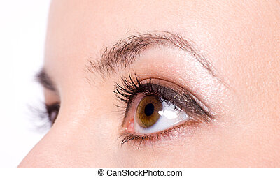 brown eyes - Close-up of Beautiful brown eyes of young girl