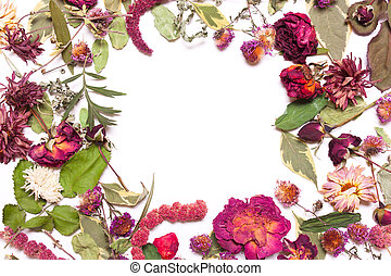 Frame of dried flowers, pink, red roses and green leaves on a white background.