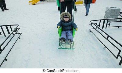 Little boy driven sledge winter.
