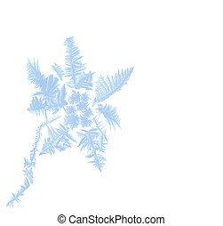 Frosty flower