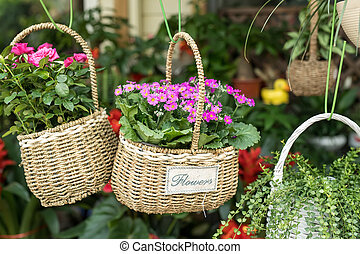 Colorful flowers in basket hanging in garden centre