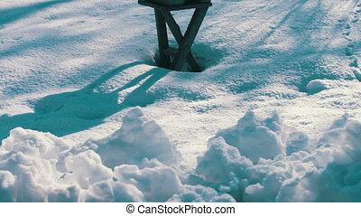 Feeder for birds in winter park - Feeder for birds in winter...