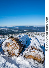 A pile of logs covered in snow - A pile of logs, cut and...