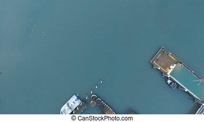 Boats Ships Kachemak Bay Homer Alaska Nautical Marine...