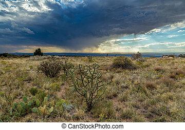 Virga in the desert - In meteorology, virga is an observable...
