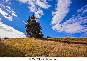 Lovely hills and valleys in the fall - The landscape of the...