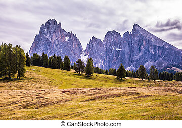 The Dolomites rise in the horizon - The Alps di Siusi....