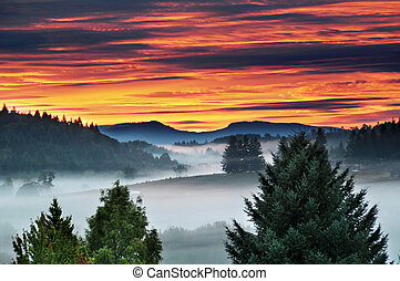 Morning Sunrise with Foggy Mist and Mountains - A beautiful...