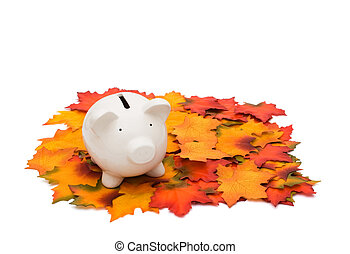 Fall Savings - Coin piggy bank on fall leaves isolated on...