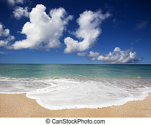clear sky and beautiful beach