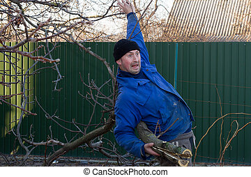 Man falls from a large branch in his hands - Man in working...