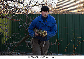 Young gardener in working clothes pulls a branch of walnut -...