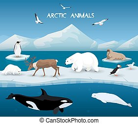 Arctic Animals Character and Background, Winter, Nature...