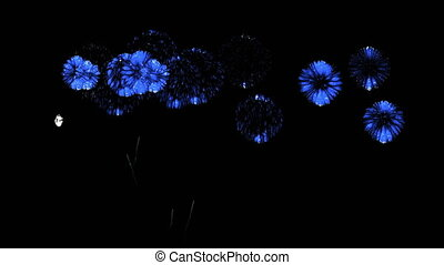 Colorful fireworks at night. Spectacular firecrakers 3d render. Blue version 27