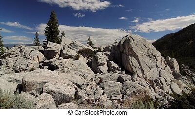 Canyon Junction, Yellowstone National Park, United States -...