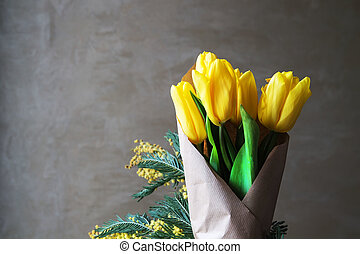 Yellow tulips on a gray background - Yellow tulips close-up...
