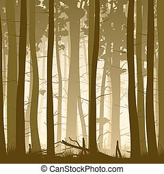 Square illustration of misty coniferous forest from inside....