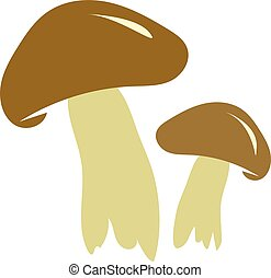 boletus mushrooms - The big brown mushrooms. The boletus....