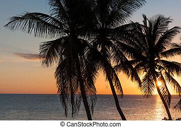 Sunset on paradise island
