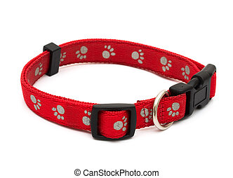 Dog Collar - A red dog collar isolated on a white background