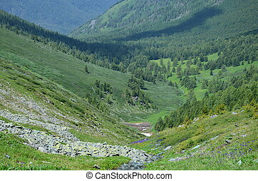 Travel to Altay Mountains during the holidays