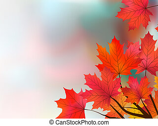 Japanese maple. EPS 8 vector file included