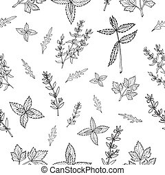 Seamless pattern with herbs - Seamless vector pattern with...