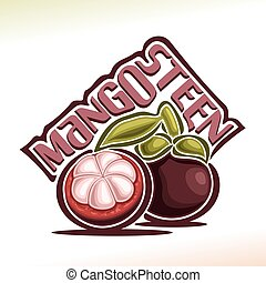 Vector logo Mangosteen Fruit: still life of 2 whole and cut...