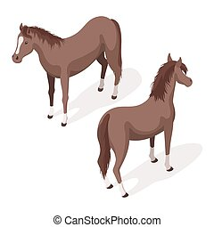 Isometric 3d vector illustration of brown sorrel horses....